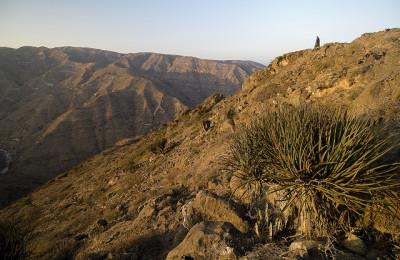GREEN MOUNTAIN JEBEL AKHDAR DAY TRIP