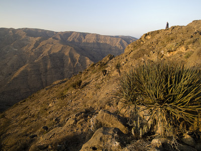 JEBEL AKHDAR – ONE DAY TOUR