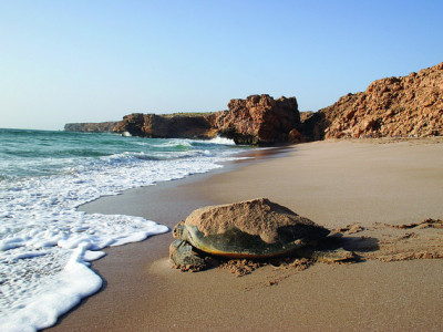 10 DAYS PACKAGE GUIDED TOURS – TREK OMAN