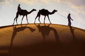 Desert day trip