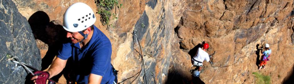 MOUNTAIN CLIMBING SNAKE  CANYON