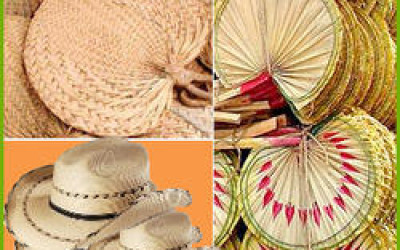 Palm leaf products