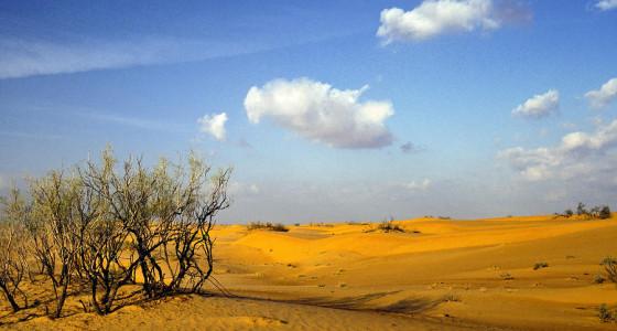 AN OMAN DESERT WALKING HOLIDAY ACROSS ARABIAN SANDS